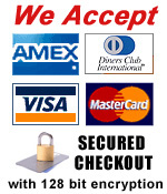 Guaranteed safe 128 bit encrypted checkout